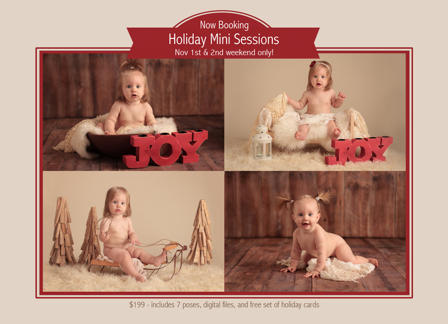 santa clarita holiday mini sessions