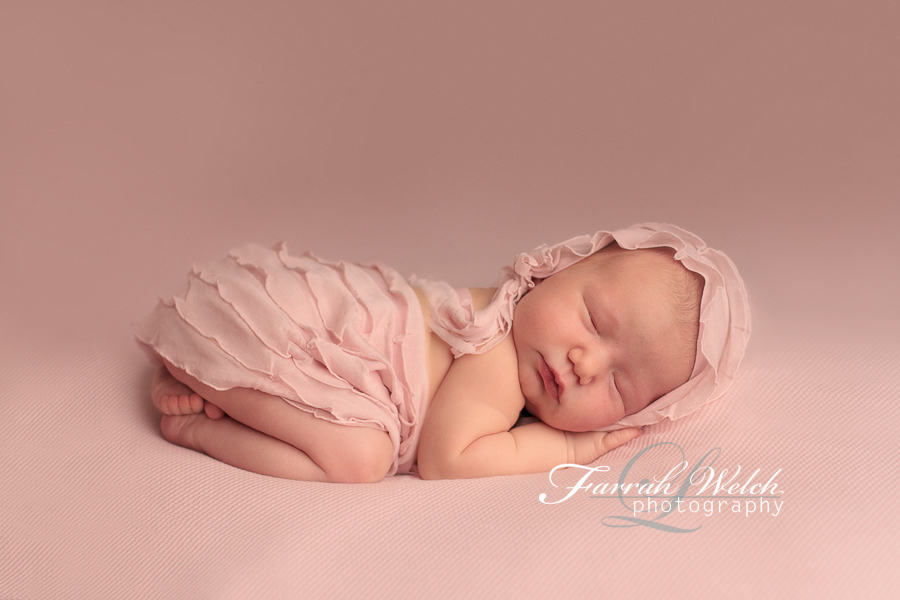 lose angeles newborn photographer