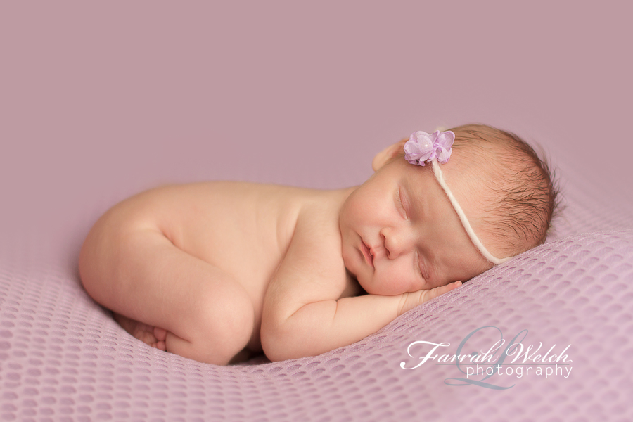 santa clarita newborn photographer - catalina